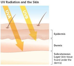 sunscreen and uva radiation